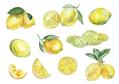 Sticker Aquarellmalerei. Jahrgang Satz von Zitronen.