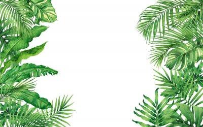 Aquarellmalerei Rahmen tropische Blätter Kokosnuss, Palme, grünes Blatt isoliert auf weißem Hintergrund. Aquarell handgezeichnete Illustration tropisches exotisches Blatt für Tapete, Hintergrund, Kart