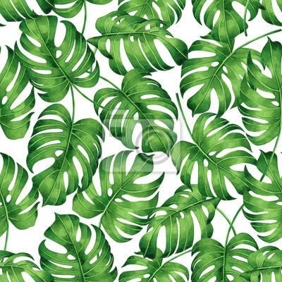 Aquarellmalerei tropische Monstera, Palmblatt, grün lassen nahtlosen Musterhintergrund.Wasserfarben handgezeichnete Illustration tropische exotische Blattdrucke für Tapete, Textil Hawaii Aloha Dschung