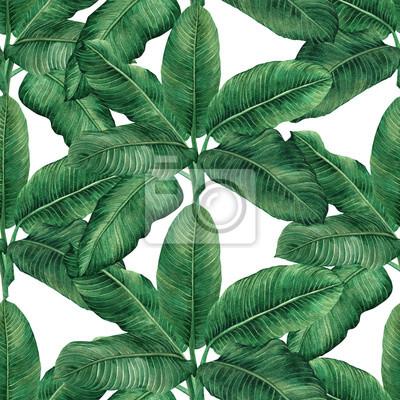 Aquarellmalereikokosnuß, Banane, Palmblatt, Grün verlassen nahtlosen Musterhintergrund Gezeichnetes tropisches exotisches Blatt des Aquarells Hand Illustration .prints für Tapete, Textil-Hawaii-aloha