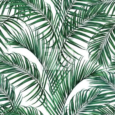Aquarellmalereikokosnuß, Palmblatt, grüner lassen nahtloser Musterhintergrund Aquarell gezeichnetes tropisches exotisches Blatt der Illustration Illustration druckt für Tapete, Textil-Hawaii-aloha Dsc