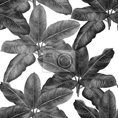 Aquarellschwarzweiss-Palmblatt, grüner nahtloser Musterhintergrund des Laubs Aquarell gezeichnetes tropisches exotisches Blatt der Illustration Handabdrücke für Tapete, Textil-Hawaii-aloha Dschungelar