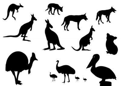 Sticker Australische Tiere Silhouette