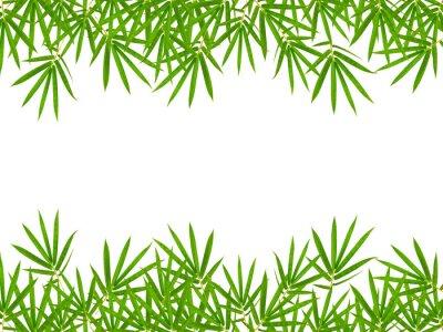 Sticker Bambus-Blätter isoliert auf weißem Hintergrund
