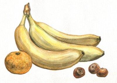 Sticker Banane, Mandarine und Haselnüsse. Aquarellmalerei