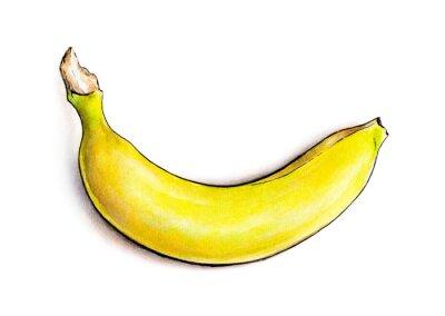 Sticker Bananen isoliert auf weißem Hintergrund. Aquarell-Illustration. Tropische Früchte