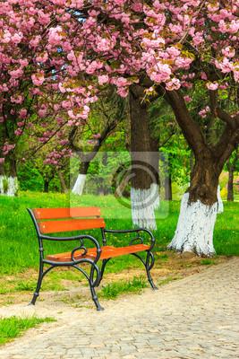Bank auf dem Bürgersteig im Park auf einem Hintergrund von Gras und s