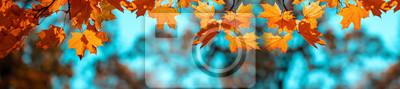 Sticker Banner autumn background
