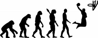 Sticker Basketball Evolution