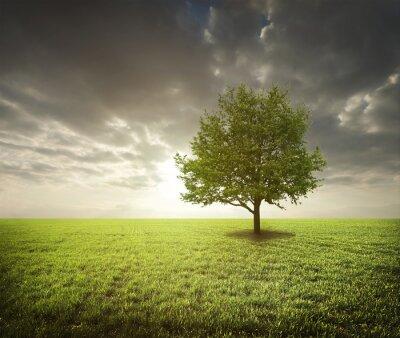 Sticker Baum