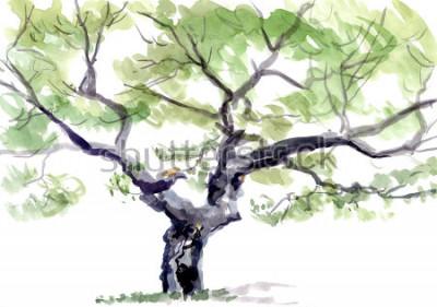 Sticker Baum, Aquarell