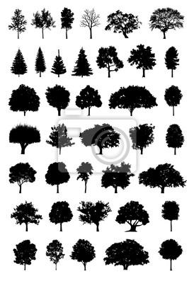 Baum Silhouette Vektor
