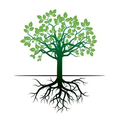 Sticker Baum und Wurzeln. Abbildung.