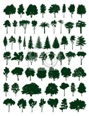 Bäume gesetzt