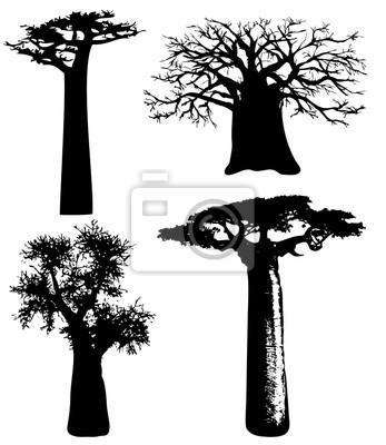 Bäume von Afrika - Vektor