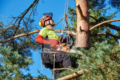 Klettergurt Reinigen : Edelrid creed klettergurt produkttest climbing plus