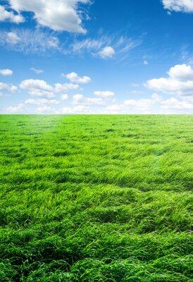 Sticker Bereich des Grases und perfekten Himmel