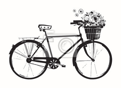 Bicycle with Flowers Illustration, Bike with basket  of flower, Art Design, Wall Decal, Wall Design.Isolated on white background