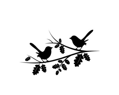 Birds Couple Silhouette on Branch Vector, Birds in love Silhouette, Wall Decals, Couple of Birds in Love, Art Decoration, Wall Decor, Birds Silhouette on branch isolated on white background, romantic