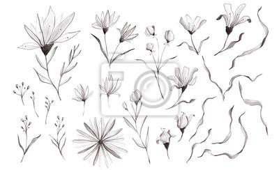 Black White Watercolor Floral Clipart