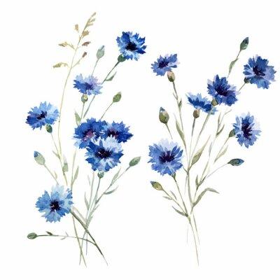 Blaue Blumen 8