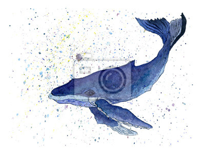 Blue Whale Watercolor. Illustration isolated on white background. For design, prints or background