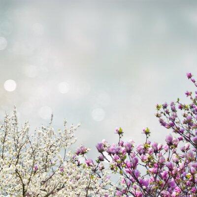 Sticker Blühender Magnolienbaum