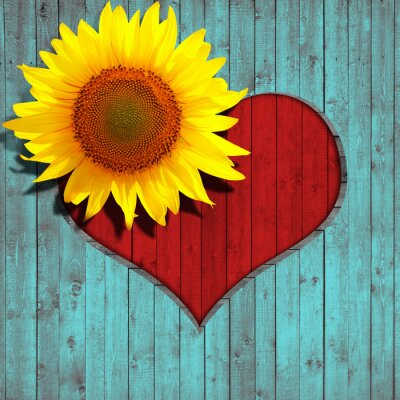 Sticker Blume Sonnen Herz und türkis Holz Hintergrund