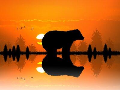 Sticker Braun im Wald bei Sonnenuntergang