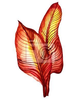 .Brown tropische Blätter. Handgezeichnetes Aquarell