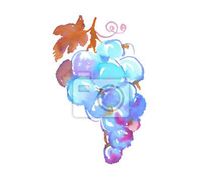 Bündel von blauen Trauben Aquarell Illustration. Isolierte Handschmerzen
