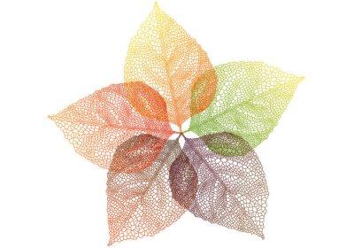 Sticker bunte Blätter im Herbst, Vektor