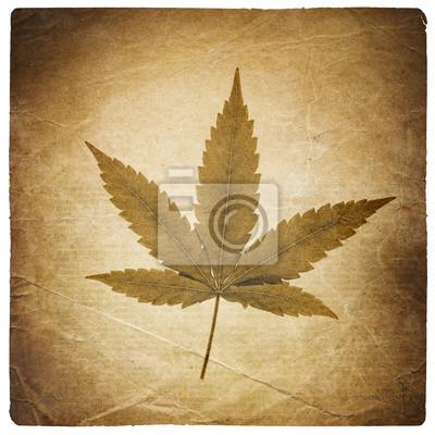 Cannabis Blatt. Vintage Hintergrund mit zerrissenen Kanten. Isoliert auf w