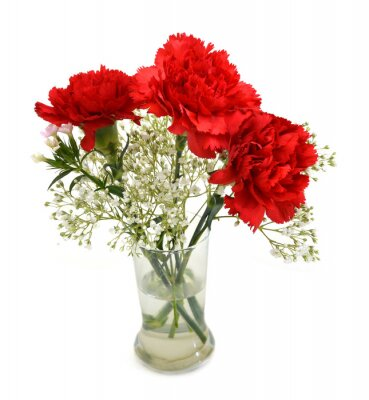 carnation flowers bouquet in vase isolated on white