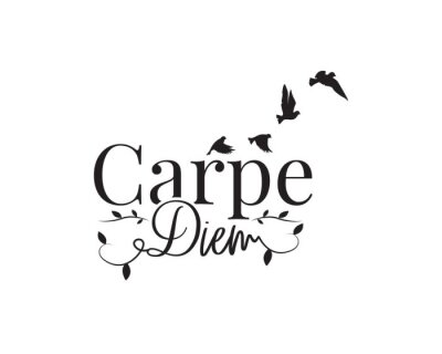 Carpe diem, Seize the day, vector. Wording design, lettering. Wall decals isolated on white background, wall artwork, wall art design. Motivational, inspirational life quote