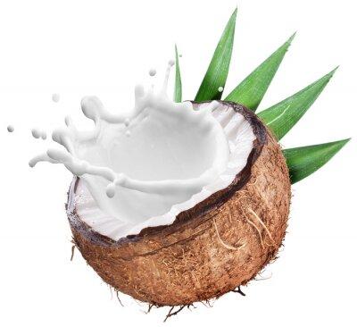Sticker Coconut mit Milch innen spritzen.