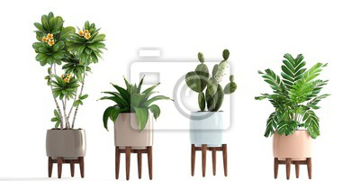 Sticker collection of ornamental plants in pots