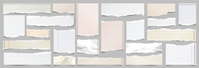 Sticker Colored ripped lined paper strips collection. Realistic paper scraps with torn edges. Sticky notes, shreds of notebook pages. Vector illustration.