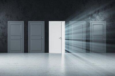 Creative white doors to success in gray concrete room