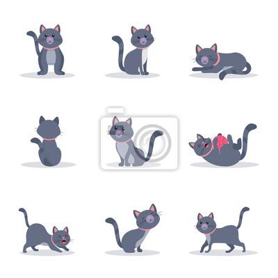 Cute grey cats vector color illustrations set