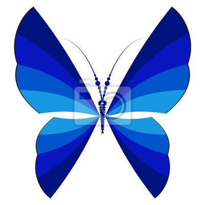 Dark blue striped butterfly