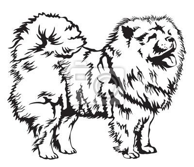 Dekorative Chow-Chow-Vektor-Illustration