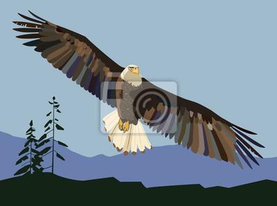 Der Adler steigt auf. Vektorzeichnung