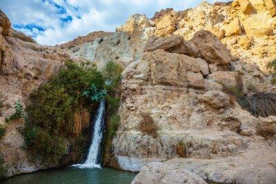 Sticker Der Nationalpark und Reserven Ein Gedi, Israel
