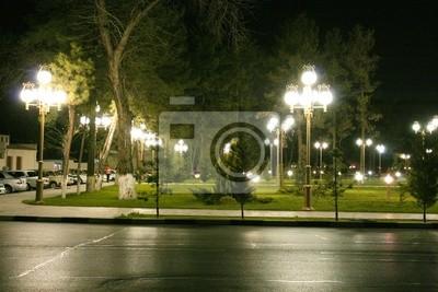 der Park nachts