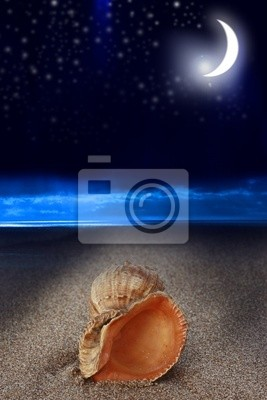 der Strand bei Nacht