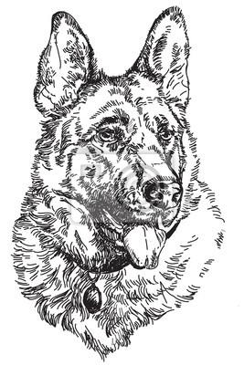 Deutsch Schäfer Vektor Handzeichnung Illustration