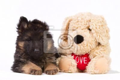 Deutsch Schäferhund Welpen mit pluche Hund