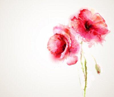 Sticker Die beiden blühenden roten Mohnblumen. Gruß-Karte.