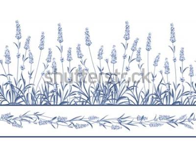 Sticker Die Lavendel Seamless Rahmenlinie. Bündel Lavendelblumen auf einem weißen Hintergrund. Vektor-illustration